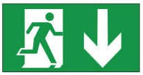 Channel Safety Systems E/LX/PIC/AD Lumen Ex Pictogram Arrow Down