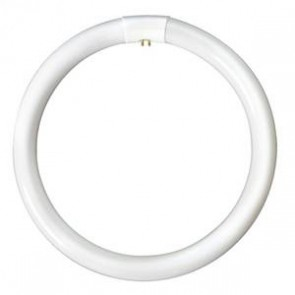 Bell Lighting T9 Circular Fluorescent Tube 60W 4 Pin G10q 3000K