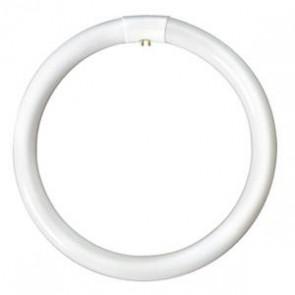 Bell Lighting T9 Circular Fluorescent Tube 60W 4 Pin G10q 3000K