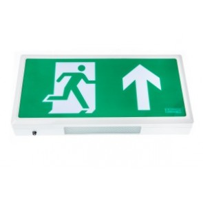 Channel Safety Systems Alpine LED Emergency Exit Box - E/AL/M3/LED